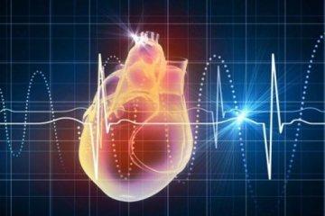 Экстрасистолия сердца, что это такое и как лечить? Симптомы и лечение