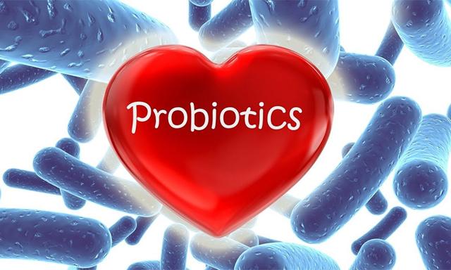 Пребиотики и пробиотики для кишечника: список лучших