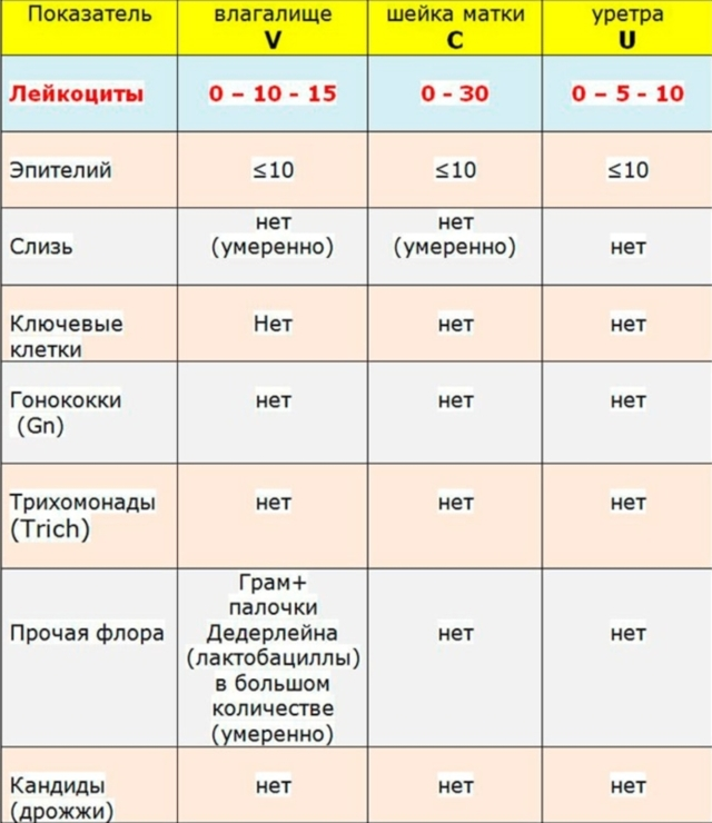 Лейкоциты в мазке, норма у женщин таблица, причины повышенного содержания, расшифровка на флору