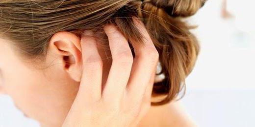 Стафизагрия гомеопатия. Показания к применению, инструкция 6, 12, 30, 200, 1000. Описание препарата, отзывы