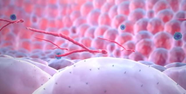 Скрытые инфекции у женщин: список и как обнаружить